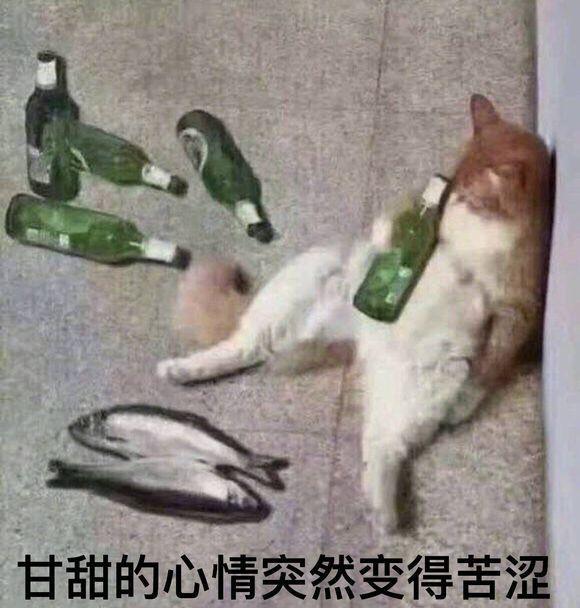 走出社恐,启蒙文